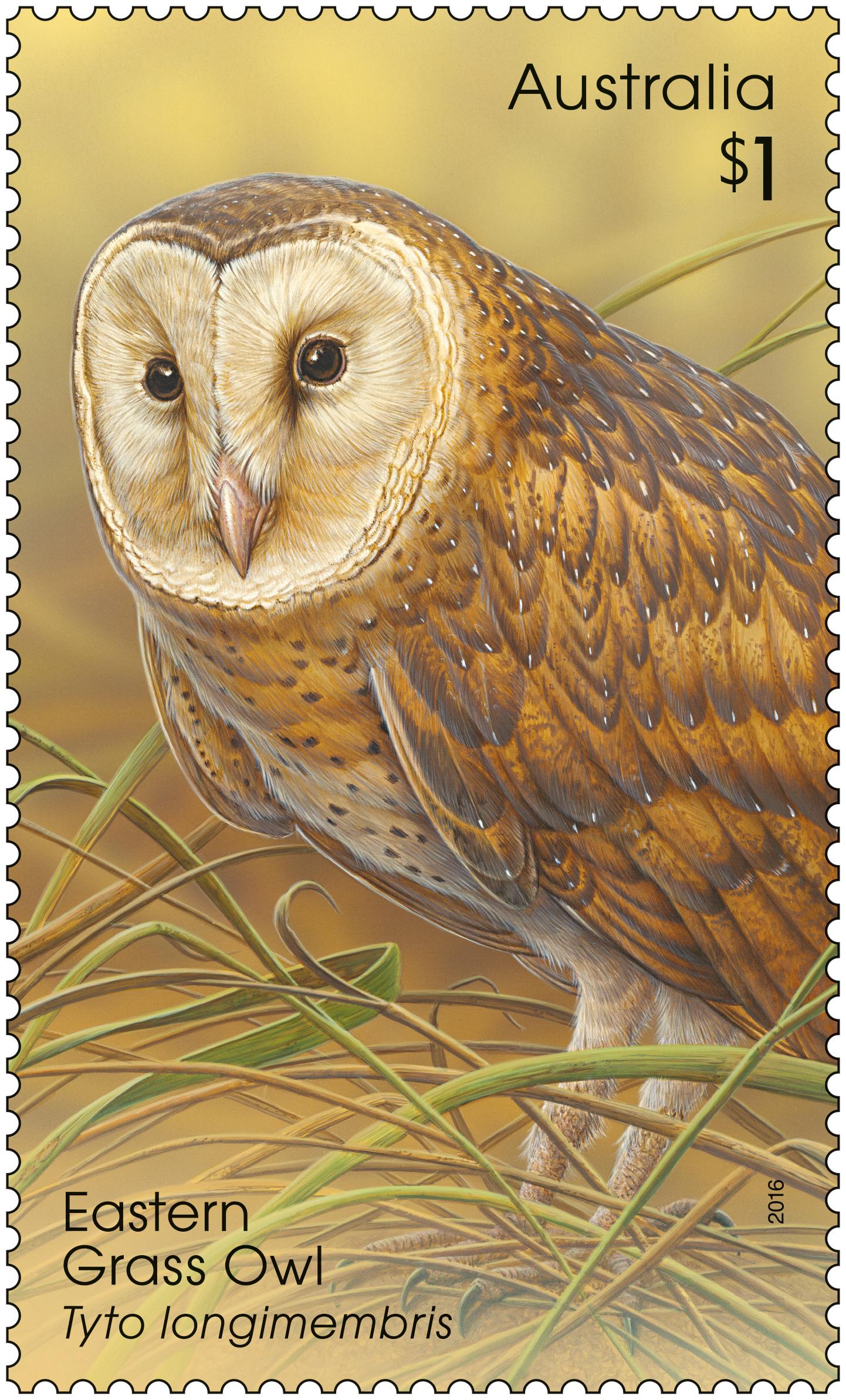 australia post takes flight with owls on stamps australia post