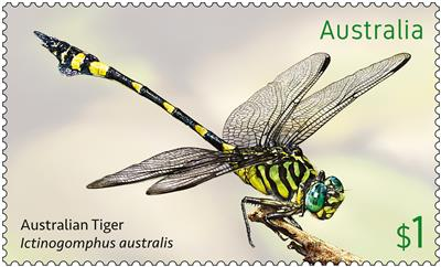 Dragonflies: Nature's Flying Machines
