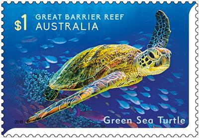 Great Barrier Reef - Green Sea Turtle
